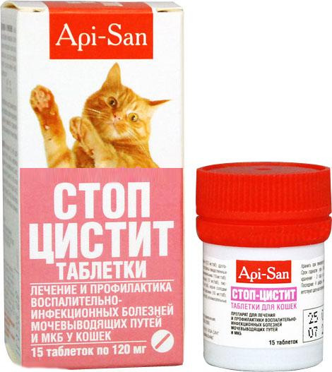Причины цистита у кота, антибиотики и профилактика заболевания