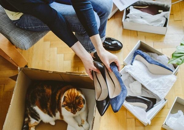 Кот пометил обувь как избавиться от запаха